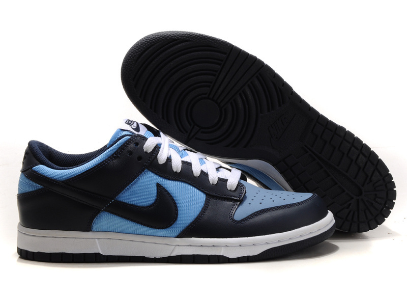 Nike Dunk Low Shoes