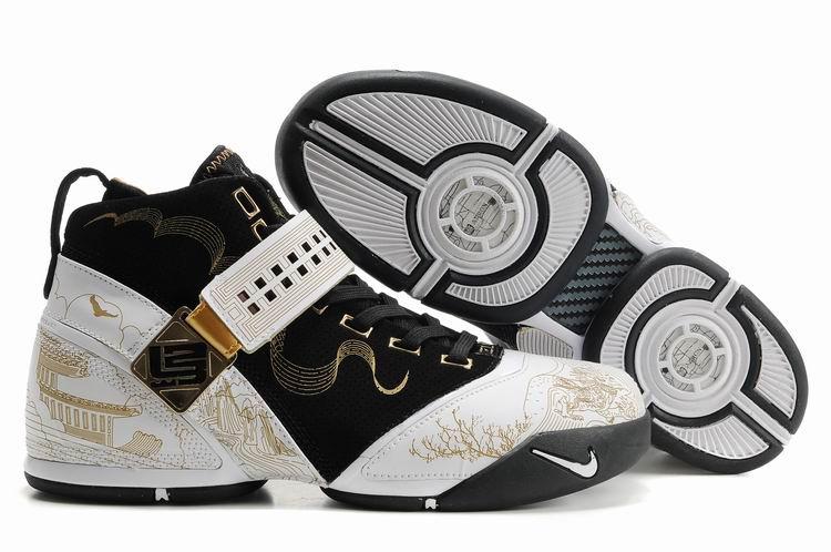 Nike Zoom Lebron V Shoes