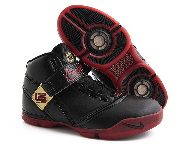 Nike Zoom Lebron V Shoes